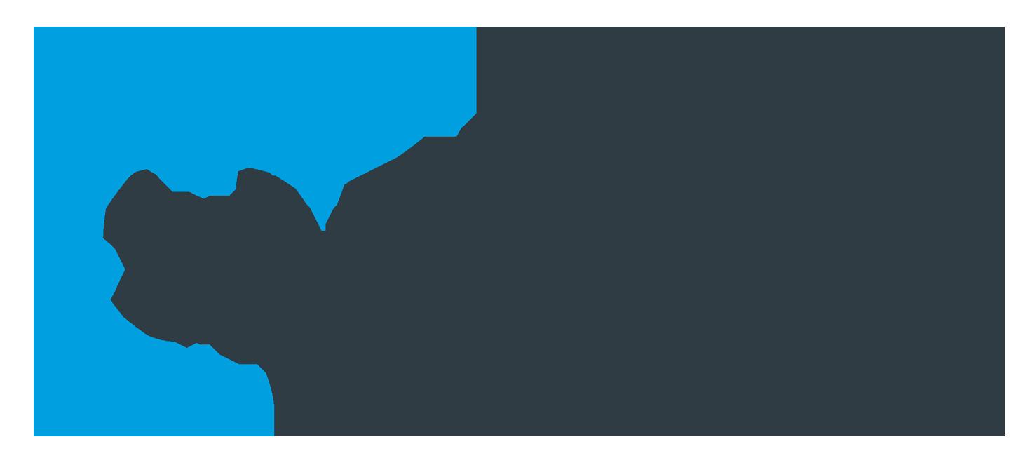 LVI-Tuukkanen logo